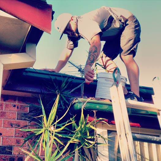 Roofing Northern Beaches Professionals on Ladder